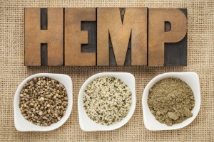 Do you know the difference between cannabis and hemp?
